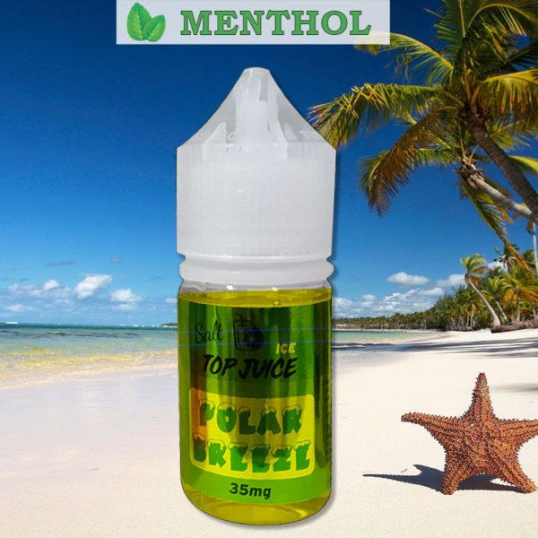E-líquido Top Juice Salt Nic Polar Breeze